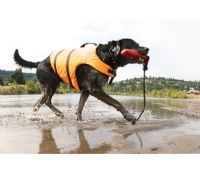 Holiday Dog Life jackets  Safety Buoyancy Aid Jacket
